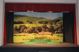 Calendar Girls Backclth with sunflowers